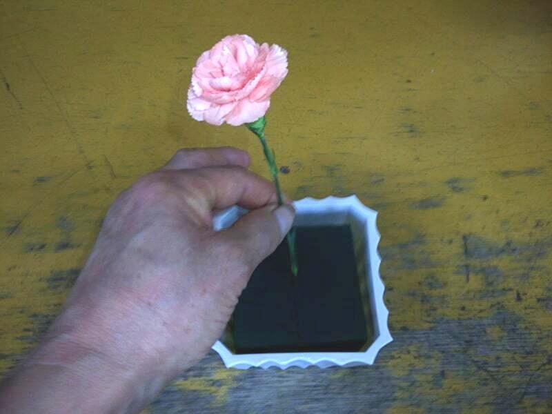 オアシスに花を挿す