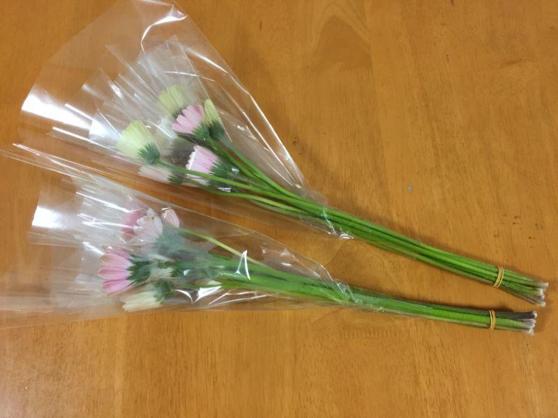 はままつフラワーパーク:ガーベラの切り花