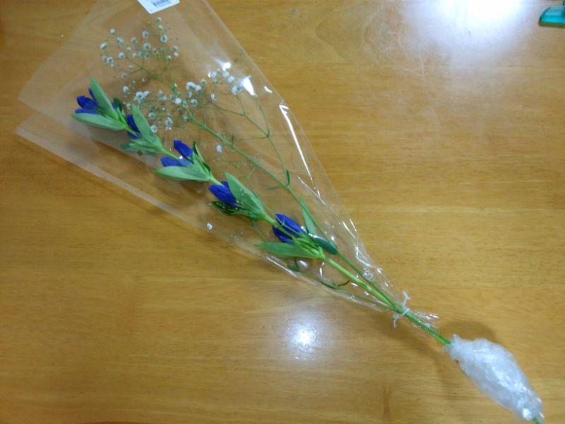 リンドウとカスミ草のパック花