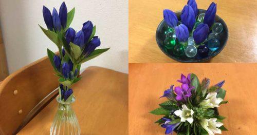 リンドウの切り花の飾り方:一輪挿しのアイデア
