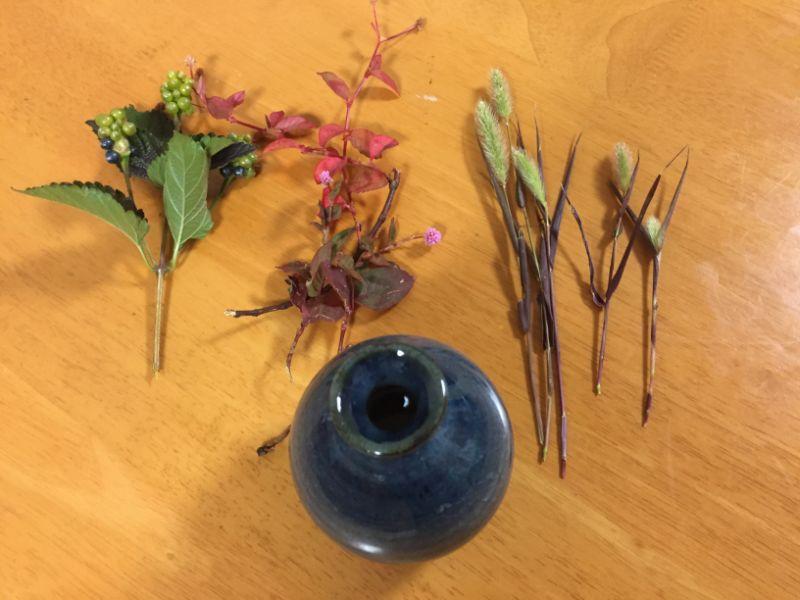 冬の雑草、紅葉の草花