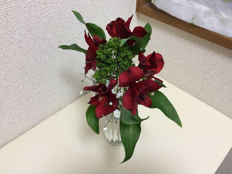 ブルーミーライフ2回目のお花