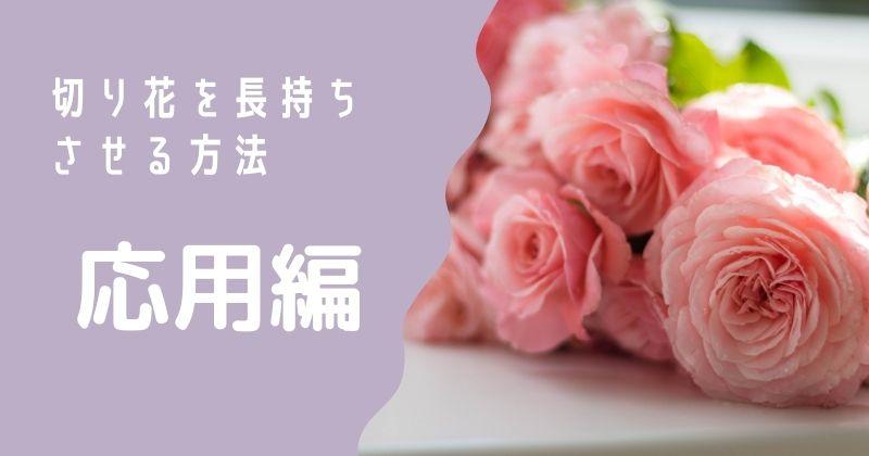切り花を長持ちさせる方法:応用編