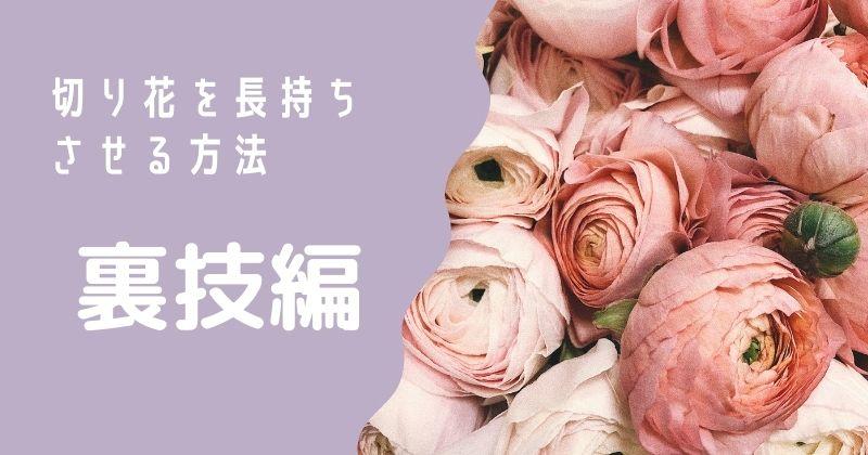 切り花を長持ちさせる方法:裏技編