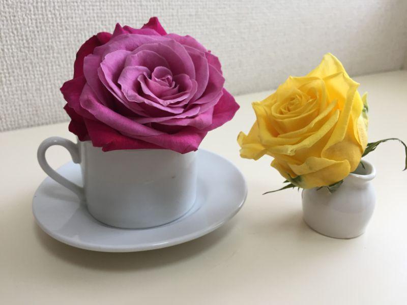 100均のコーヒーカップとミルクピッチャーと産直のバラで一輪挿し