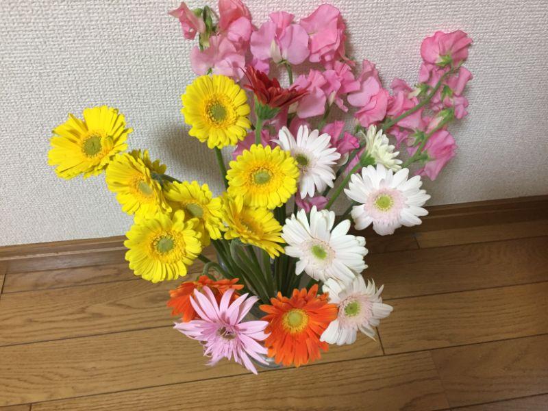 直売所で切り花を購入する際の注意点