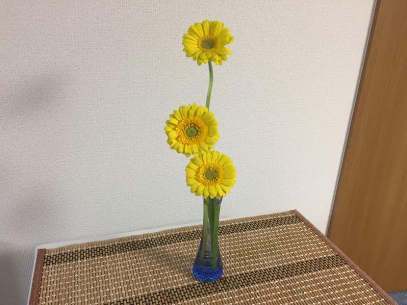 黄色いガーベラ3本を100均の花瓶に飾る