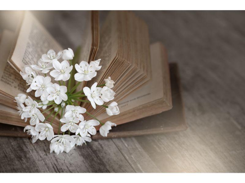アリウムコワニーの花言葉