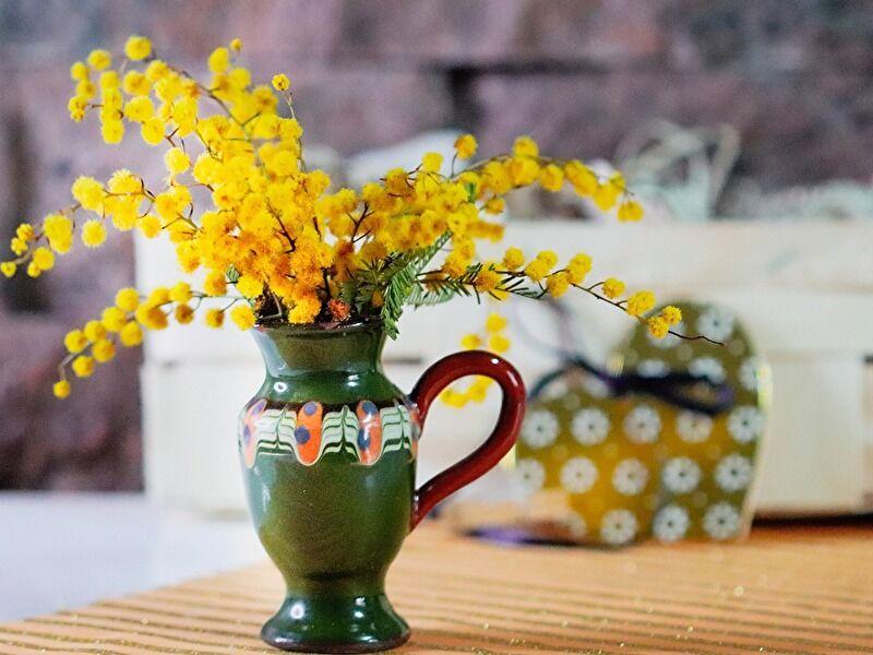 ミモザの切り花の特徴、飾り方