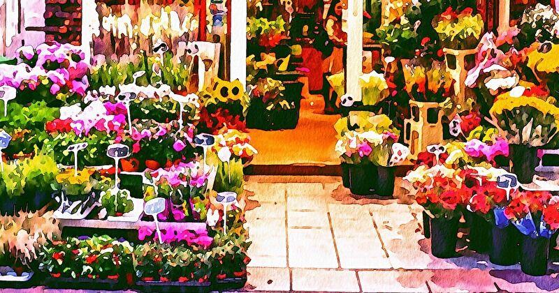 お花ってどこで買う?