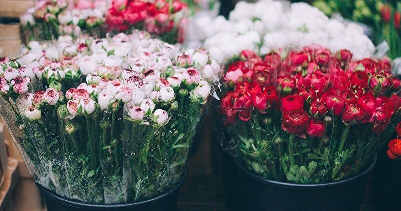 勝手にお花に触ってもいいの?