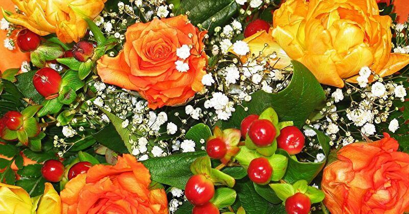 新鮮なお花の見分け方