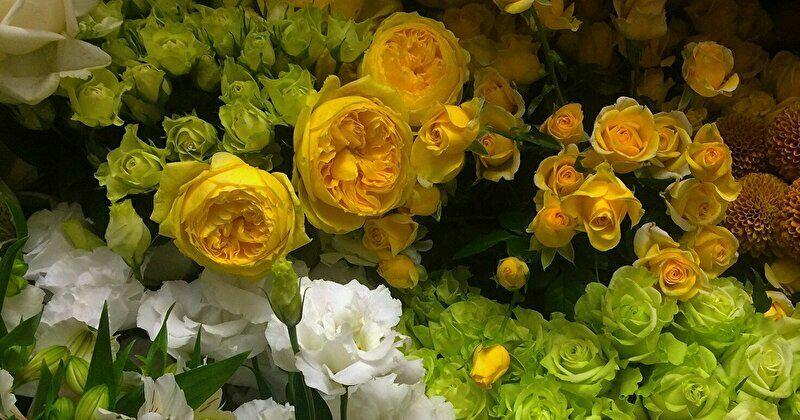 つぼみのお花と満開のお花、どちらを選ぶ?