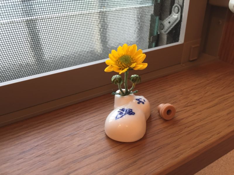 小菊をひょうちゃんに一輪挿し