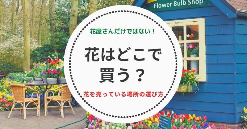 花はどこで買う?花屋さんだけではない!花を売っている場所の選び方