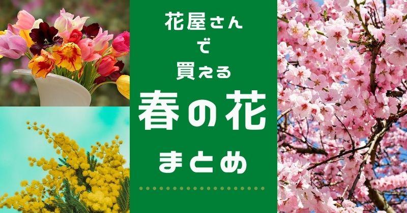 お花屋さんで買える春の切り花