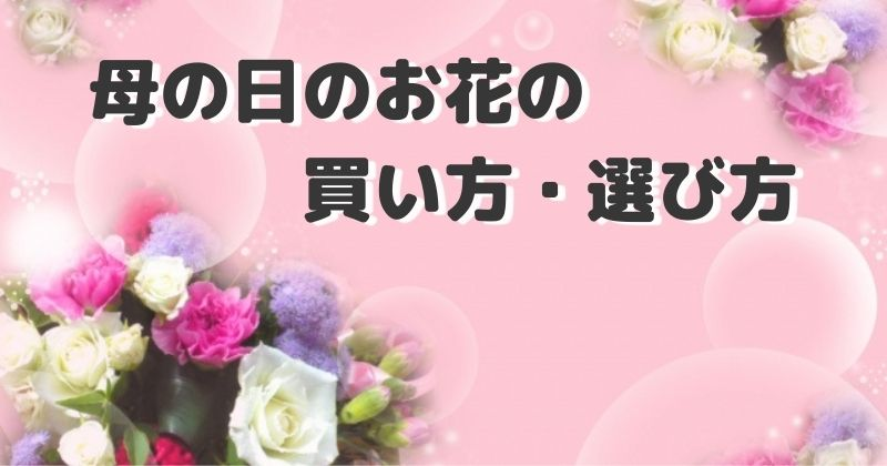母の日のお花の買い方・選び方