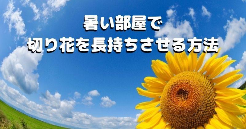 締め切った家や夏など、暑い部屋で切り花を長持ちさせる方法